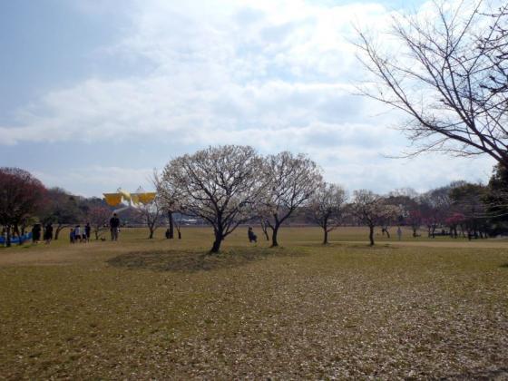 03 公園広場