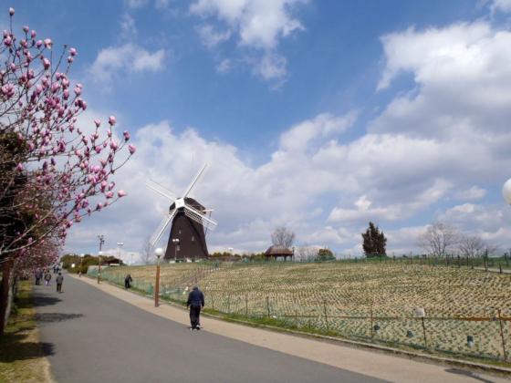 09 風車の丘