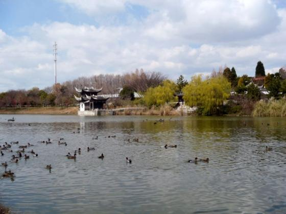 07 鶴見緑地大池