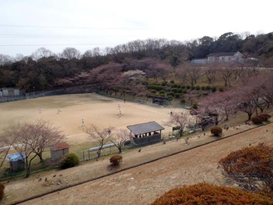 04 桜色