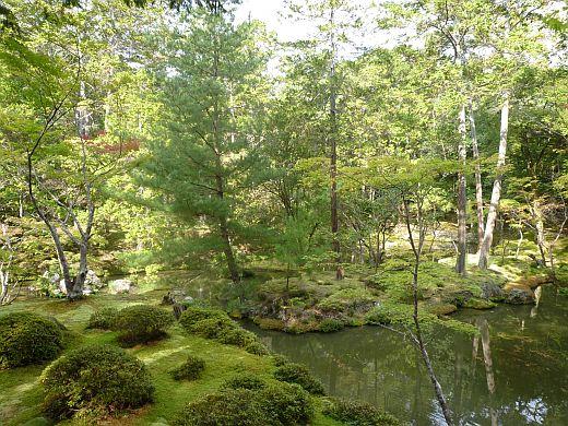 苔寺の庭-1