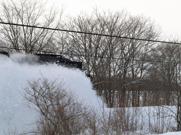 雪をこいで