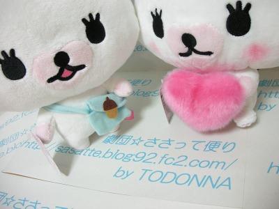 DSCN4653-s.jpg