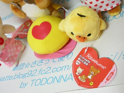 DSCN4656-s.jpg