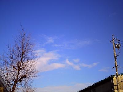 PICT0022-s.jpg