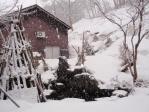 我家の庭からの雪景色