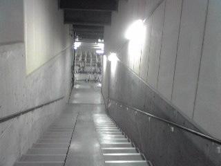 扉を開けると地下へ続く階段が