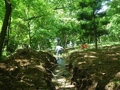 北川水辺クラブの定期清掃4