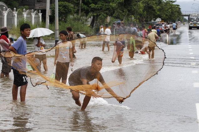 洪水でも魚とり