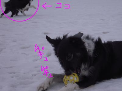 snap_sawadee76_20092019462.jpg