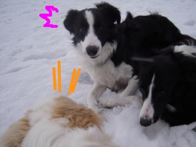 snap_sawadee76_20092020230.jpg