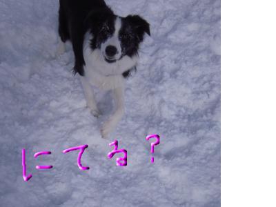 snap_sawadee76_20092417443.jpg