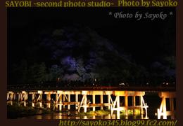 二番目の小夜子の写真館♪0151