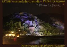 二番目の小夜子の写真館♪0152