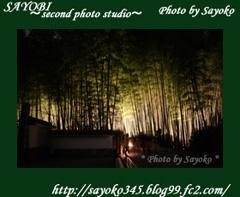 二番目の小夜子の写真館♪0160