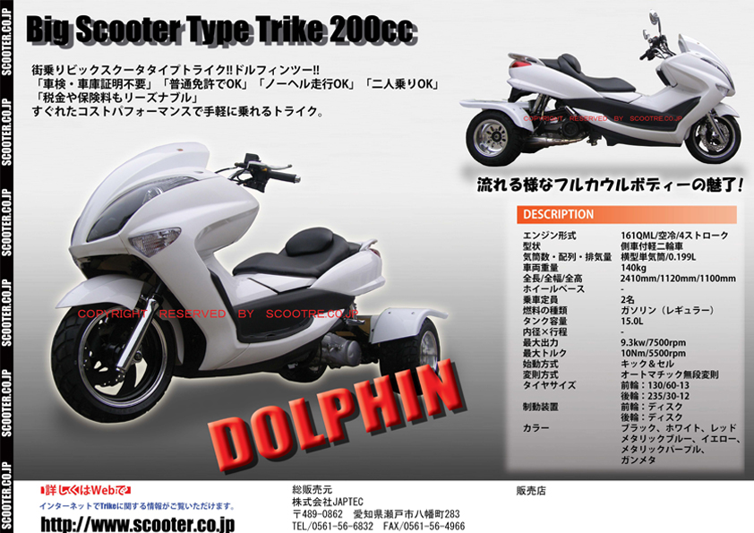 dolphin_w2.jpg