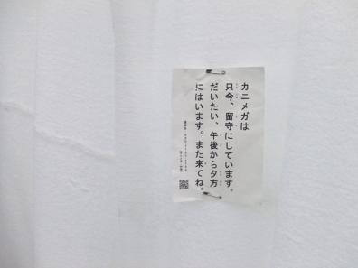 sen_4215.jpg
