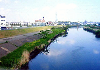 新羽橋201004302
