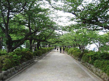 鎌倉2663