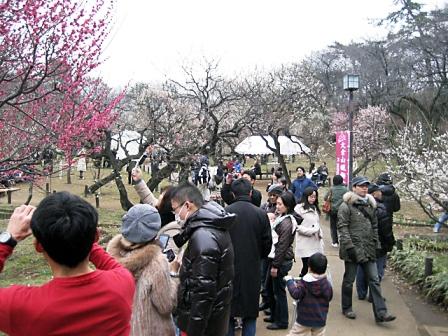 大倉山梅まつり3369