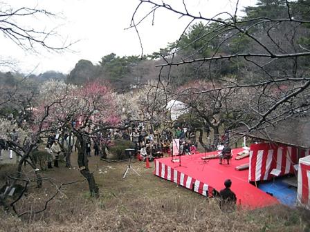 大倉山梅まつり3392