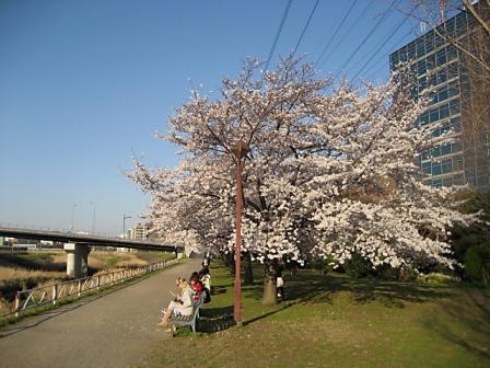 新横浜3448