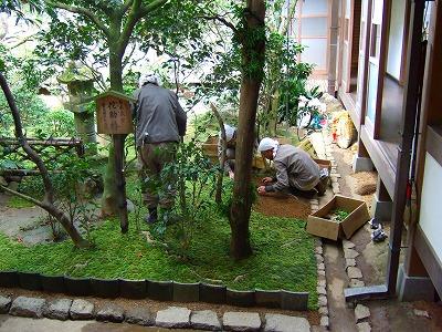 龍安寺の庭
