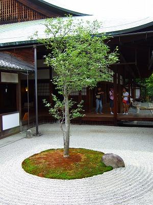 建仁寺お庭4