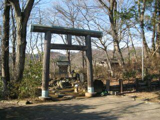 薬神神社、鳥居