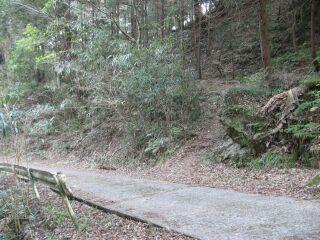 IMG_2334登り道
