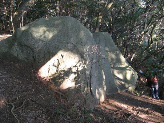 IMG_2328林の中の巨石