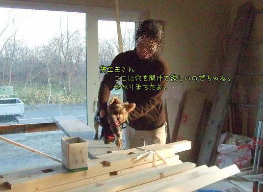 081124-maki6.jpg