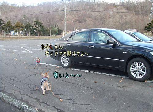 081207-yuki3.jpg