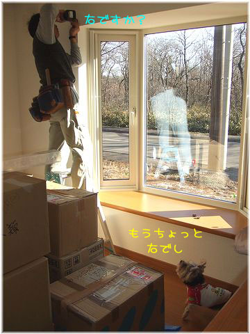 081215-hitukosi8.jpg