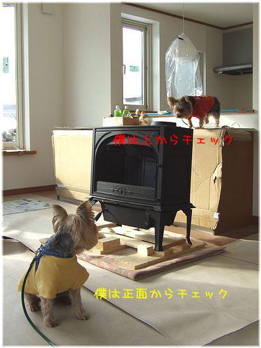 081215-idou167.jpg