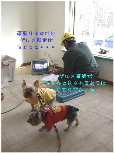 081215-idou18.jpg