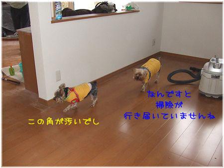 081217-souji4.jpg