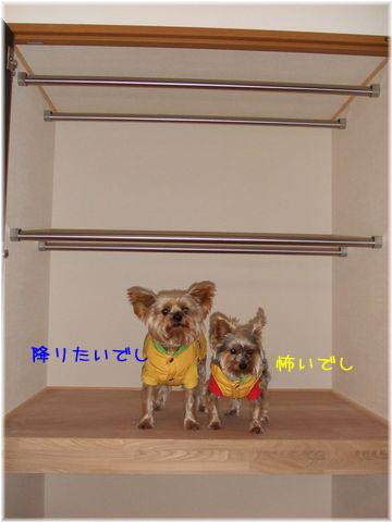 081217-souji7.jpg