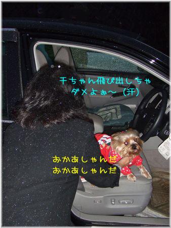 081220-nimotu14.jpg