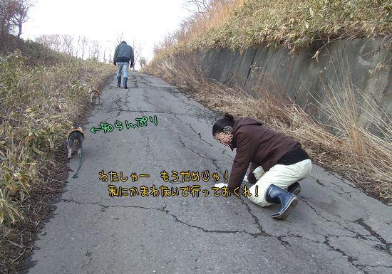 090130-sanpo2.jpg