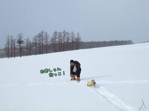 090219-hyoujyun28.jpg