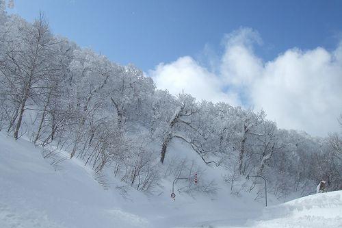 090219-hyoujyun3.jpg