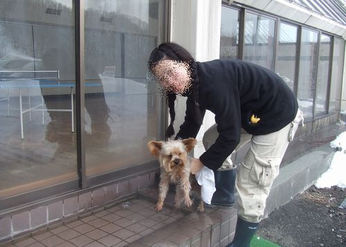 090219-hyoujyun30.jpg