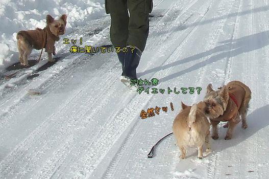 090221-yuki8.jpg