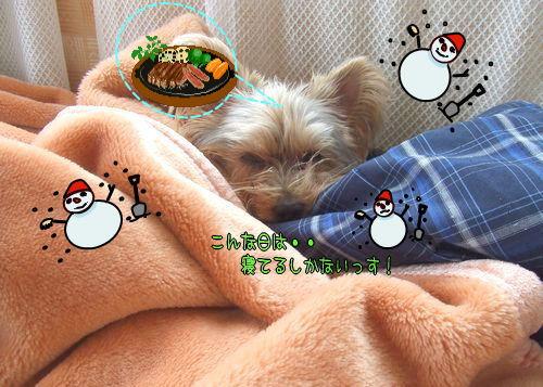 090222-ooyuki2.jpg