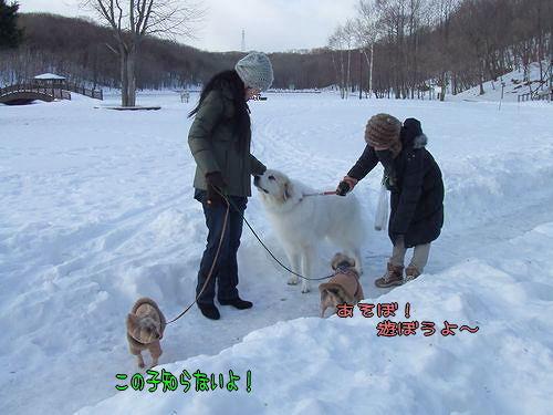 100122-tokoya5.jpg