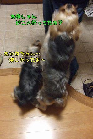 100318-tokyo5.jpg