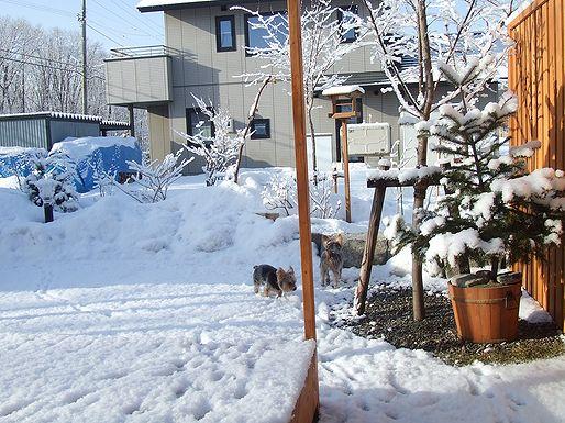 100324-yuki4.jpg