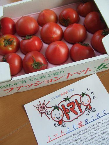 100517-tomato2.jpg