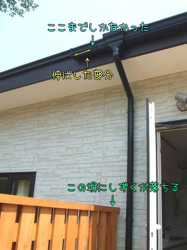 100626-amadoi2-s.jpg